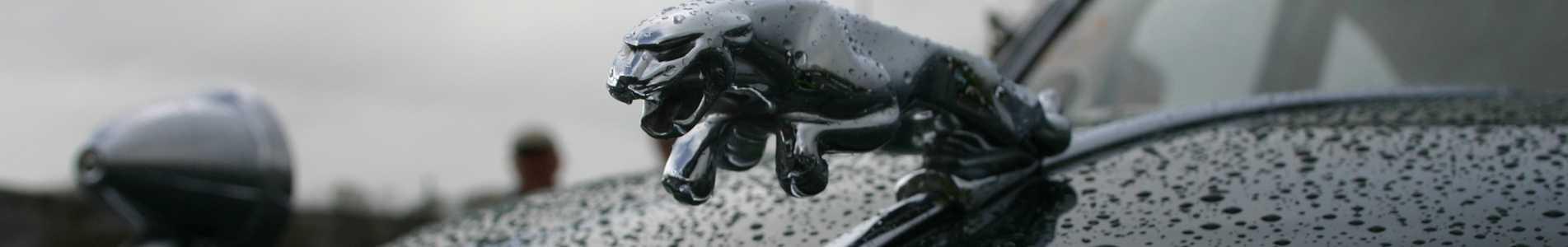 cabecera-jaguar